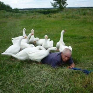 Goose Hell