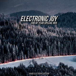 Electronic Joy - End of Year Special Mix - December 2013