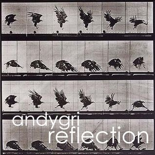andygri//Reflection