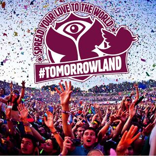 Uto Karem @ Tomorrowland 2013
