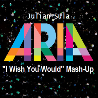 "Aria (Julian Sula ""I Wish You Would"" Mashup)"