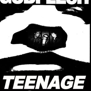 Godflesh Teenage Riot - Almost Rage (ST Meshup)
