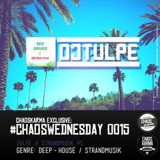 #CW 0015: DJ Tulpe - Strandmusik #5 // DEEP-HOUSE