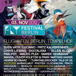 Henrik Schwarz (live) @ FLY BerMuDa Festival 2012,Tempelhof Airport (03.11.12)
