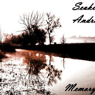 Memory 005. (Mixed by Seakid & Andre Ben)