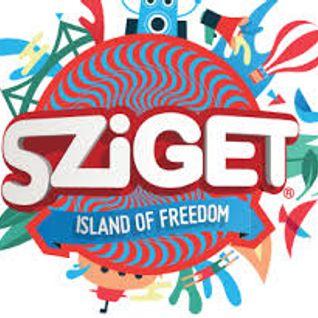 Sasha @ Sziget Festival 2016 Budapest 12-08-2016