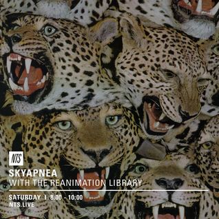 SKYAPNEA w/ The Reanimation library - 21st May 2016