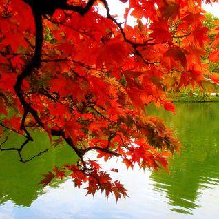 Kharma - deadly autumn 2010 mix
