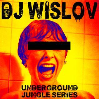 DJ WISLOV SERIES (UNDERGROUND JUNGLE NIGHT)
