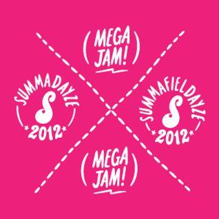 Summadayze 2012 Mega Jam Mash Up