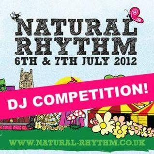 Natural Rhythm Festival Mix - Sounds of Joah