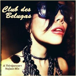 NUJAZZ - Club des Belugas