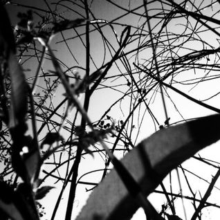 Demia E.Clash - Expoza Mix 1 2014