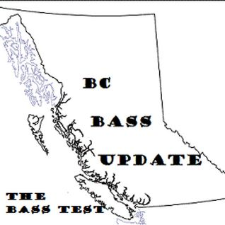 Ep. 50 - BC Bass Update