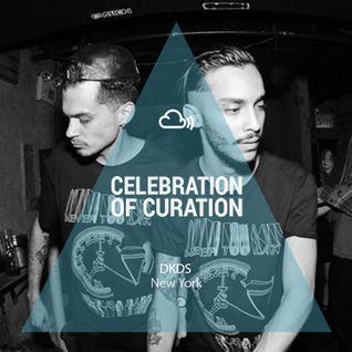 Celebration Of Curation 2013 #NY: DKDS