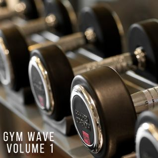 Gym Wave Volume 1 - Garage / House / Baseline & Grime