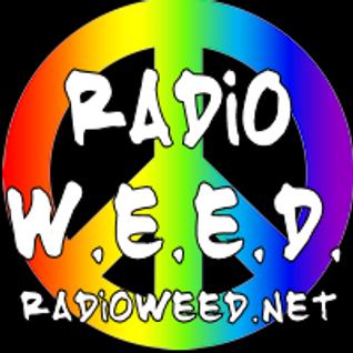 "Weird Al ""Mandatory Fun"" Premier Show"