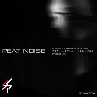 Peat Noise - Flash-X & Friends Podcast on ART STYLE TECHNO (26.JAN.2014)