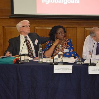 IDS/Beyond 2015 UK  - Speech by Dr Precious Gbeneol, Special Assistant to Nigerian President on MDGs
