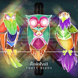 MoloKaii - ThreeBirds E.P. November 2013