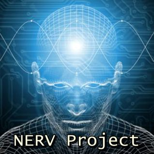 DJ Valiku and Dream Junkie Nerv Project vol.18