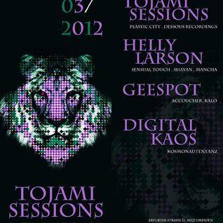 Tojami Sessions @ Kosmonautentanz - Sa 17.3.2012 - District, Dresden