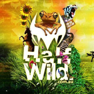 Half Wild: Podcast // Episode 026 // Sebastian Wild: Live @ Slinky (Akl), 2009 (hr2)