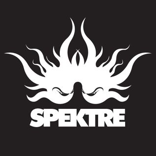 Spektre (Live) @ Harry Klein | 13-08-10 (2nd Hour)