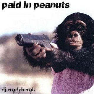 Paid In Peanuts mix (2008)