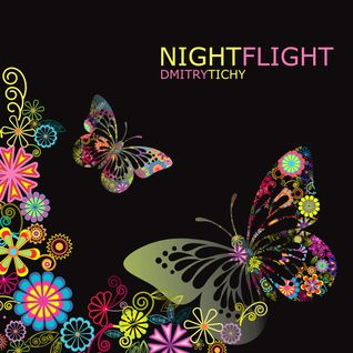 Dmitry Tichy - Night Flight 2012 (Promo CD)