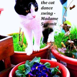 the cat dance swing - Madame Summit