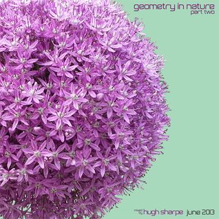 Geometry In Nature - June 2013 part 2