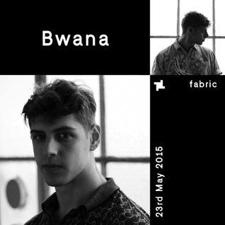 Bwana - fabric x Aus Music Mix