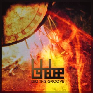 Dig This Groove