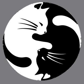 MiSS NiCat - White Dark ''BassDeep''