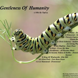 The Gentleness Of Humanity