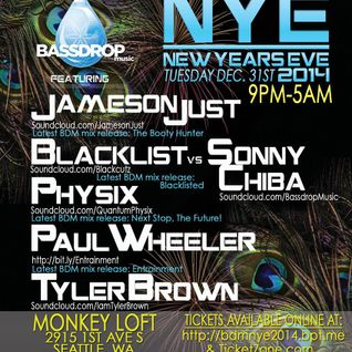 Physix Live @ The Monkey Loft NYE 2014