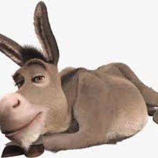 Donkey Broths ;)