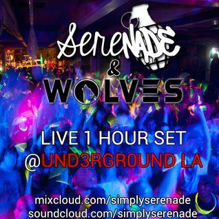 Serenade & WOLVES @UND3RGR0UND LA 5/3/14
