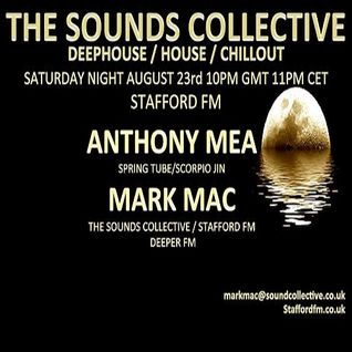 Anthony Mea And Mark Mac The Sounds Collective.