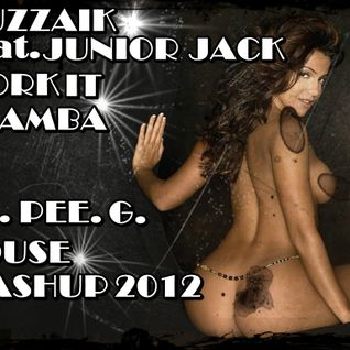 Muzzaik Feat. Junior Jack - Work It E Samba ( DJ.PEE.G. House Mashup 2012. )