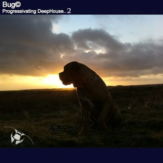 Bug© - Progressivating DeepHouse II (Sunday Session 2013-06-29 )