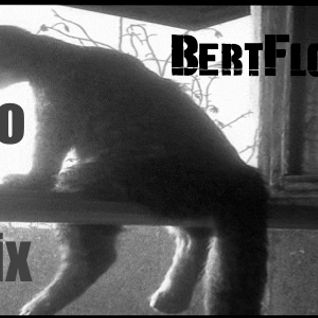 Junio BertFloor Mix