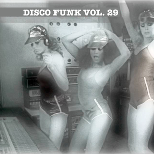 Disco-Funk Vol. 29