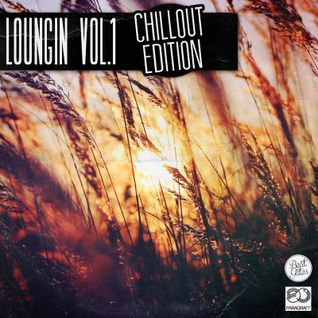 Beat Gates - Loungin' Vol. 1 (120 minutes of erotic lounge, chillout, house and jazz)