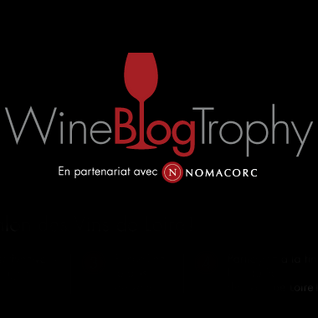 Wine Blog Trophy 2013 : interview des gagnantes du 1er prix Anne Graindorge Vanessa Godfrin