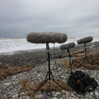 """I am here"", an exploration through Field Recordings"