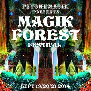 Mixmaster Morris @ Magik Forest Festival pt1