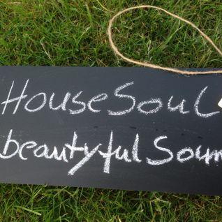 HouseSoulastic