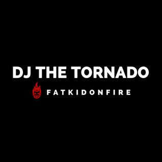 DJ The Tornado x FatKidOnFire (Best of 2013 pt. I) mix
